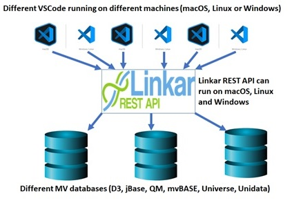 MV Basic Linkar architecture